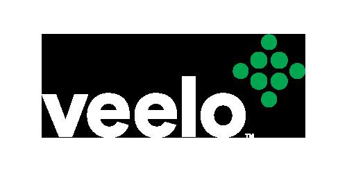 Sales Effectiveness Platform | Veelo